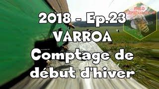 Fred l'Apiculteur - 2018 - Ep.23 VARROA: comptage de début d'hiver