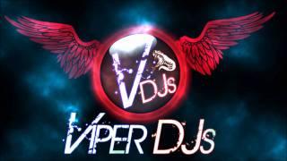 Bhangra Mix Part 1   Viper DJs