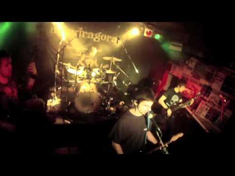 Mandragora - Last Door