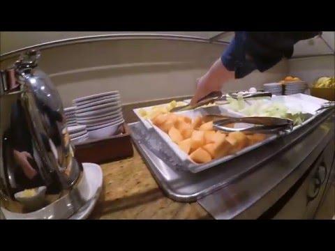 DoubleTree by Hilton Hotel**** Metropolitan – New York City review [HD]