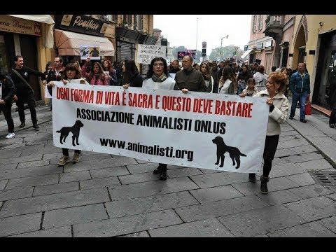 essereumano, inno Animalisti Onlus di Valentina Rubini - Official Video