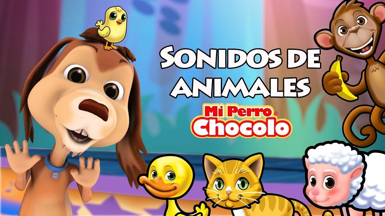 MI PERRO CHOCOLO APRENDE - SONIDOS DE ANIMALES