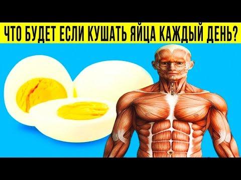 ЧТО БУДЕТ ЕСЛИ КАЖДЫЙ ДЕНЬ ЕСТЬ ЯЙЦА? Сколько яиц можно есть в день?