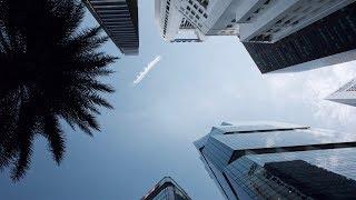 Центр Сингапура: Мерлион парк, светящиеся деревья • SV8