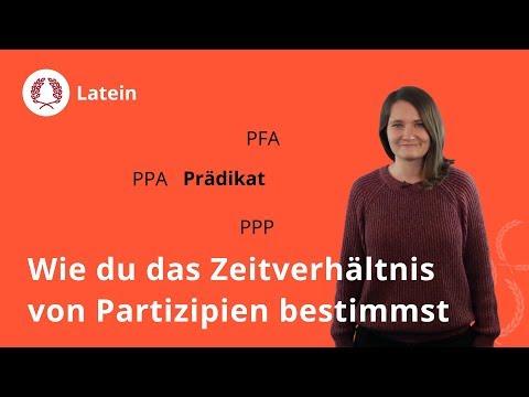 Single party recklinghausen