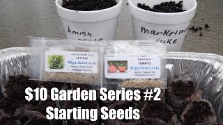 The $10 Garden Series #2- How to Start Seeds Indoors