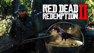 """Red Dead Redemption 2 Secrets! - Witches """"Mysterious Liquid"""" Soup Location - (RDR2 Secrets!)"""