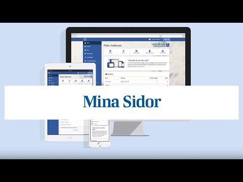 11777 Mina Sidor