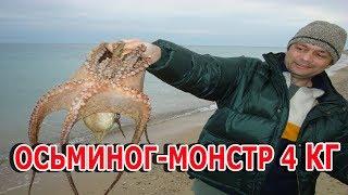 Рыбалка в греции с берега на осьминога