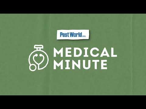 Medical Minute: Lyme Disease & COVID-19
