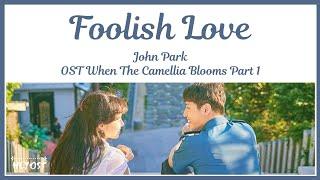 John Park (존박) - Foolish Love (이상한 사람) OST When TheCamellia Blooms Part 1   Lyrics