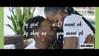 WizKid   Fever Official Video (lyrics)