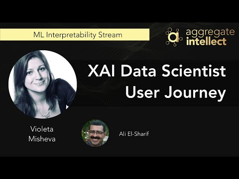 XAI Data Scientist User Journey