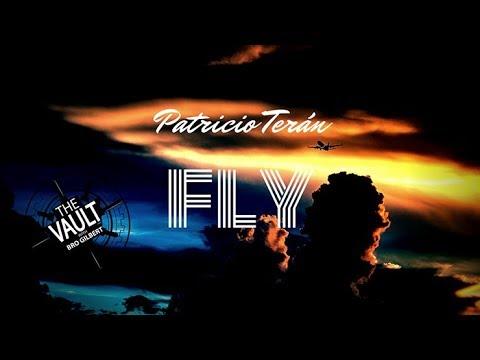 The Vault - Fly by Patricio Teran
