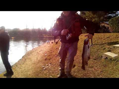 Comprare il muschio gumboots verde per pesca