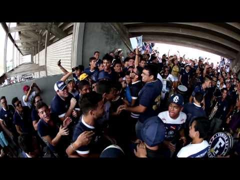 """Camisa 33 - Leão de Antônio Baena - 09-01-2016"" Barra: Camisa 33 • Club: Remo"