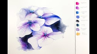 Loose Flowers in Watercolor Hydrangea using Reference Photo