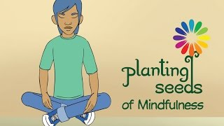 Planting Seeds of Mindfulness - Laying a Strong Foundation for Social Justice Work