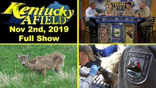 Watch Video - CWD Special