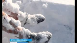 Пропавшую Оксану Серову нашли мёртвой