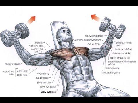 Ćwiczenia na wzmocnienie mięśni nóg w domu dla mężczyzn