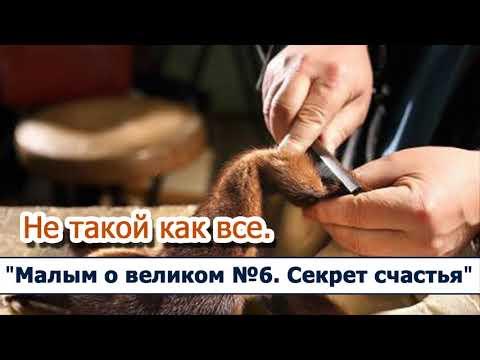Счастье есть все серии русская озвучка