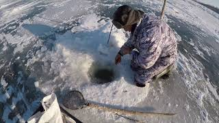 Рыбалка в целинном районе алтайский край