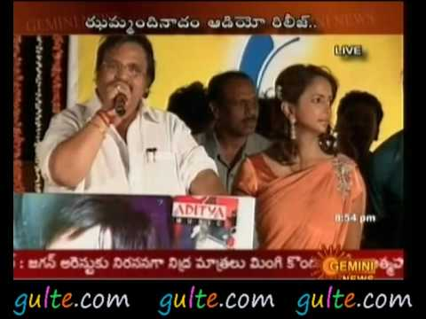 Jhummandi Naadam Audio Release Function Part 10