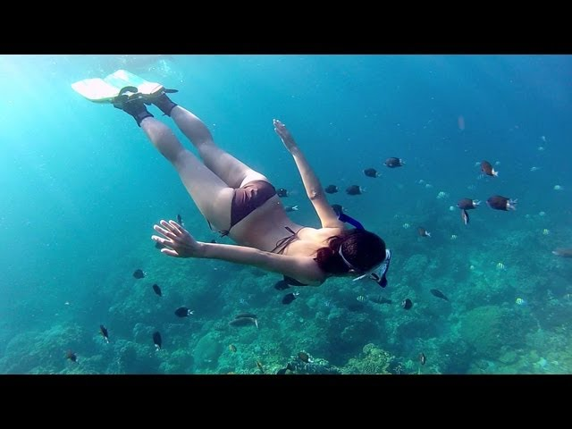 Snorkeling Green Island