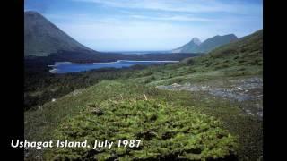 The Barren Islands, Alaska
