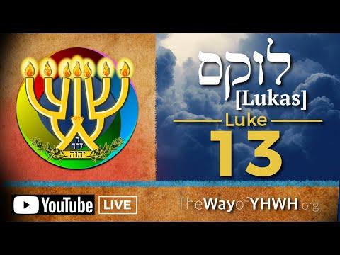 Luke 13 [לוקס] (Repent or Perish | The Barren Fig Tree | A Spirit of Infirmity | The Narrow Way)