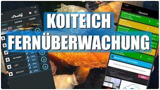 Koiteichblog [150] ★ Koiteich überwachen mit Mobile Alerts, Shelly Plug S und Arlo Netgear