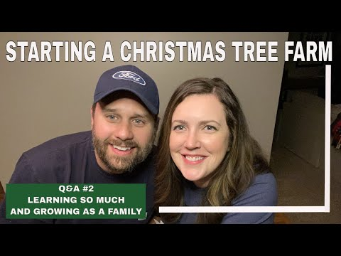 , title : 'STARTING A CHRISTMAS TREE FARM | Q&A 2 | mistakes and what we've learned so far