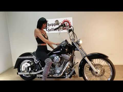 2002 Harley-Davidson FXST/FXSTI Softail®  Standard in Temecula, California - Video 1