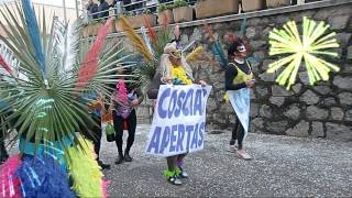 preview picture of video 'Carnevale 2013 a Trinità'