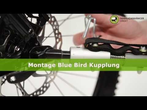 Montage Blue Bird Kupplung