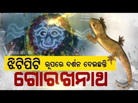 Special Report: Darsan, Supernatural View Of Baba Gorakhnath From Jagatsinghpur