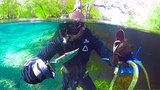 Searching for Treasure in Alligator Infested Water!! (Dangerous) - Video Youtube