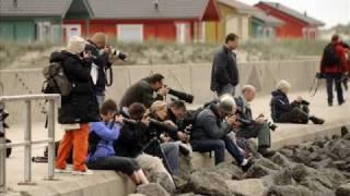 Cursus Natuurfotografie Helgoland (lente)