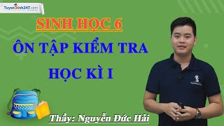 Ôn tập kiểm tra học kì I – Sinh học 6 – Thầy Nguyễn Đức Hải – Tuyensinh247.com