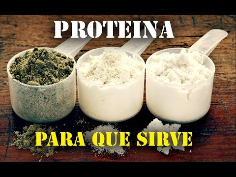 para que sirve la proteína en polvo