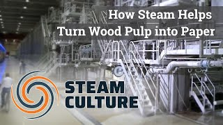 How Steam Helps Turn Wood Pulp into Paper - Steam Culture