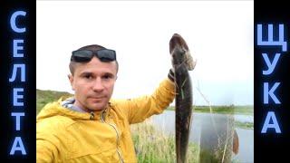 Рыбалка в казахстане степногорск