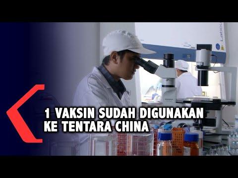 pemerintah identifikasi beberapa jenis vaksin covid yang masuk indonesia