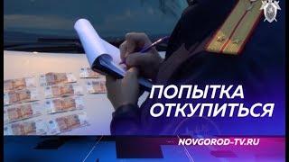 Предприниматель в Боровичах попытался откупиться от полицейских и стал фигурантом уголовного дела