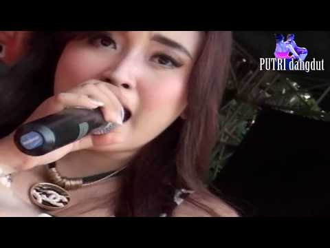FULL HD - caca BOHAY..!! - WILL ||caca BOHAY..!! - WILL || dangdut koplo HOT dangdut koplo HOT