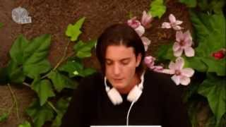 Tomorrowland 2013 - Alesso Years - live [HD]