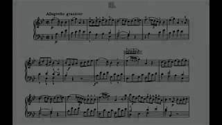 "Mozart Sonata K.333 B-dur 3rd movement ""Rondo"" on Casio PX-5S as ""Vibraphone"""