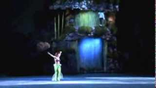 Disney on Ice - Somebody to love (Anne Hathaway version)