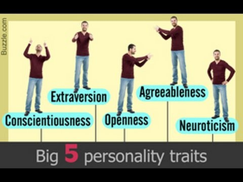 Understanding the Big Five Personality Traits With Examples
